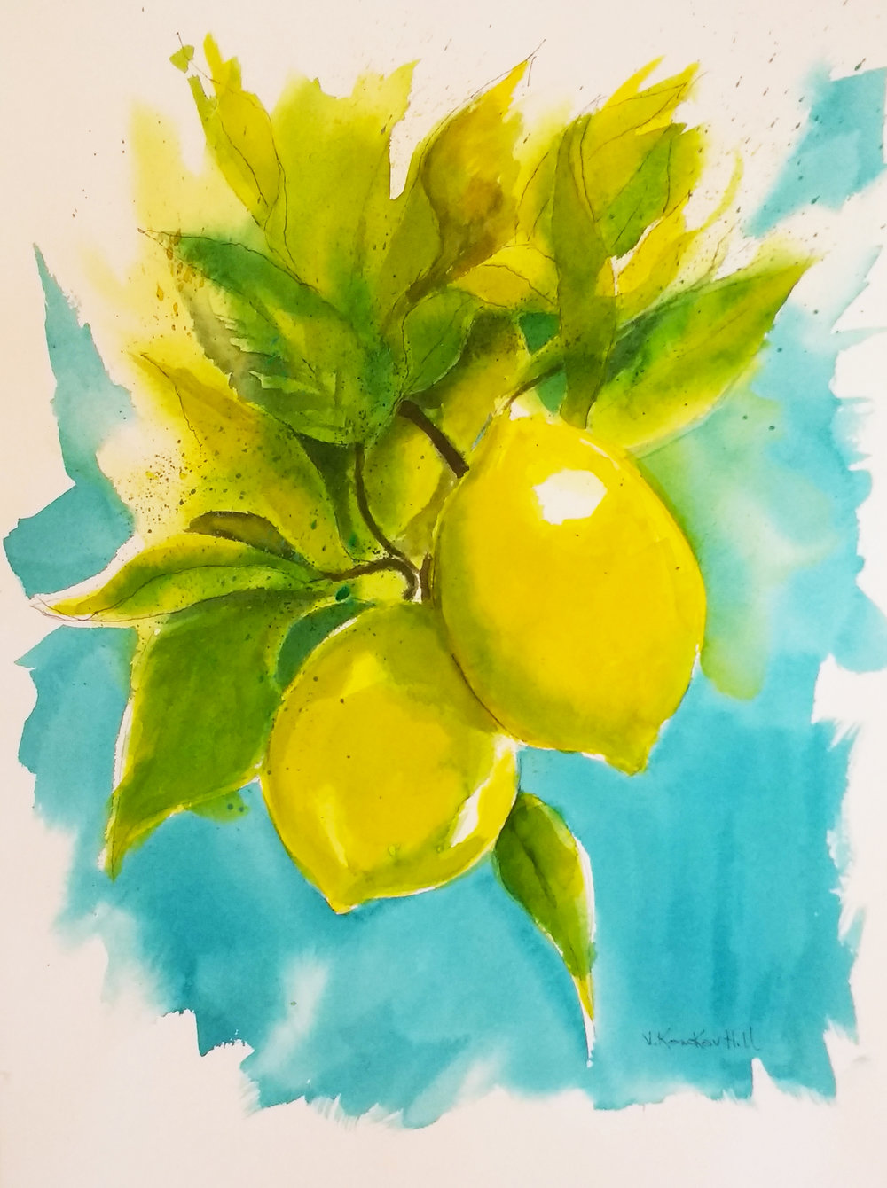 Lemon Tree-Healdsburg, California- 2017