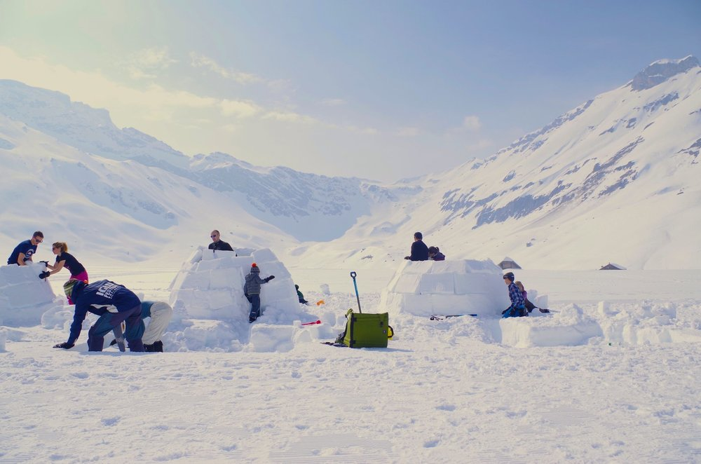 People competing to build the best igloo. All photographs: Erica Buist