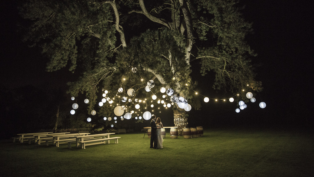Decorate trees with lanterns