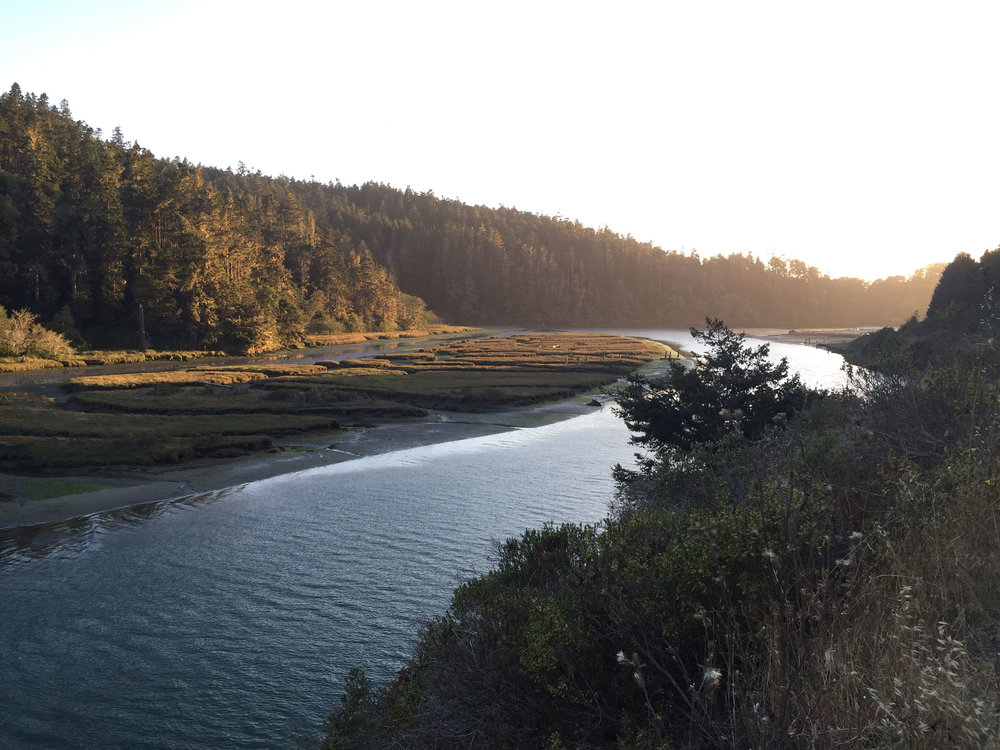 the river near Mendocino Grove travels through undeveloped forest land