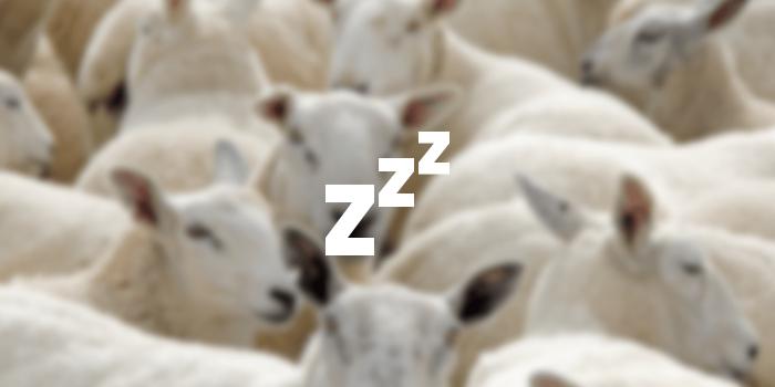 089_zzz_icon