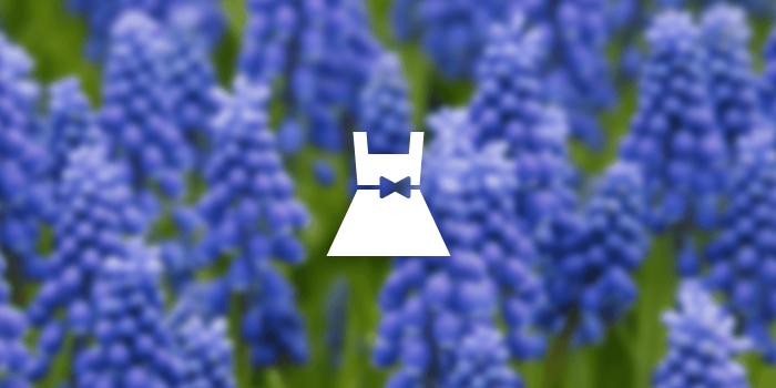 138-dress-icon