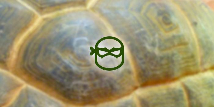 teenage mutant ninja turtle icon