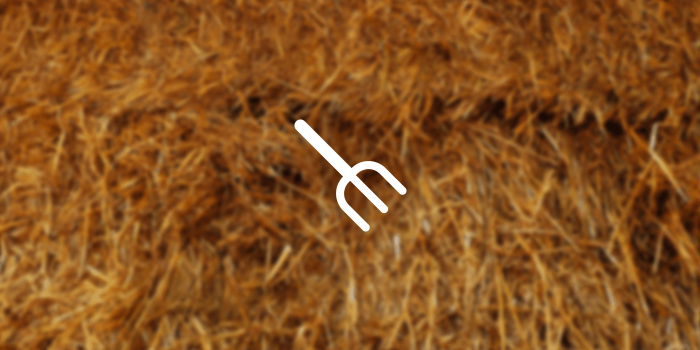 pitchfork icon