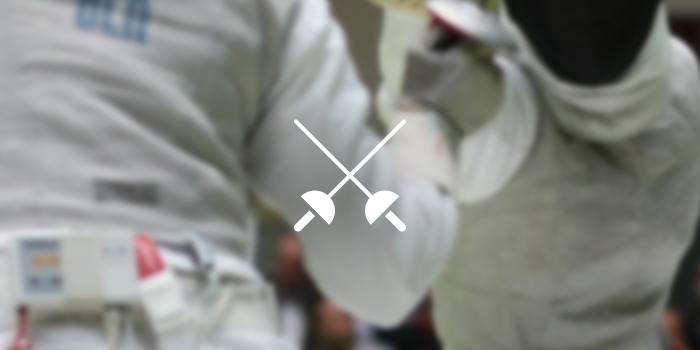 317 fencing icon