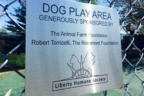 A dog walk and play area the Rosemont Foundation funded at the Liberty Humane Society -  Liberty Humane Society, Jersey City New Jersey