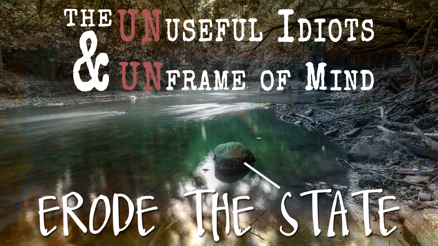 113: Eroding the State with UnUseful Idiots