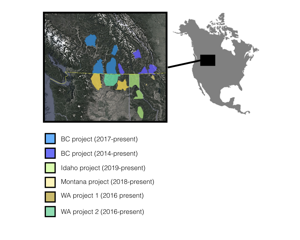 The study area includes multiple states and provinces, allowing us to study community dynamics of large mammals across large landscape gradients