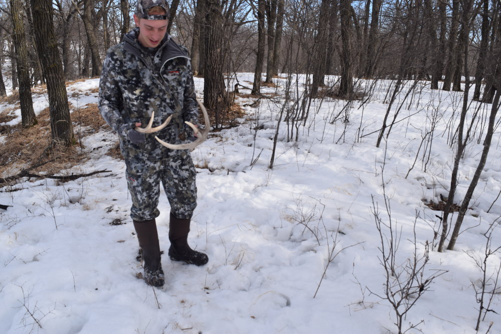 Another solid day shed hunting.