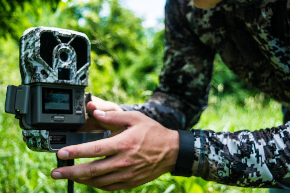 trail-cam