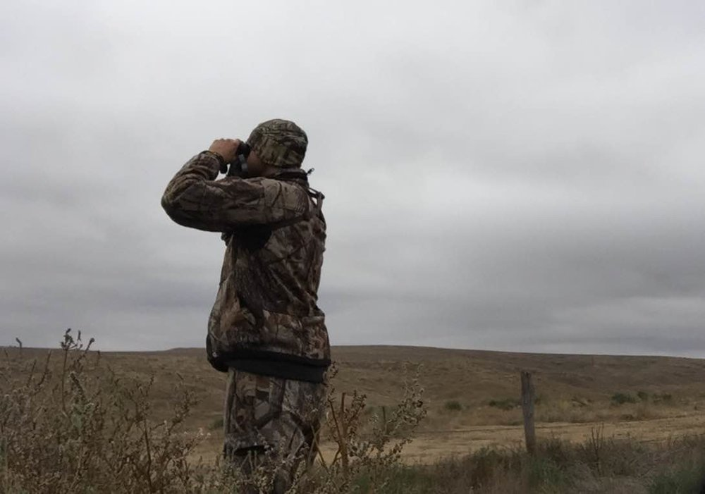 Finding whitetails in open country is much like searching for a needle in a haystack.