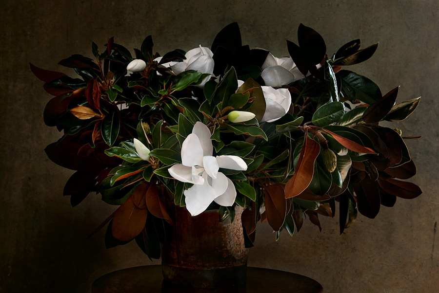 Magnolia on table .jpg