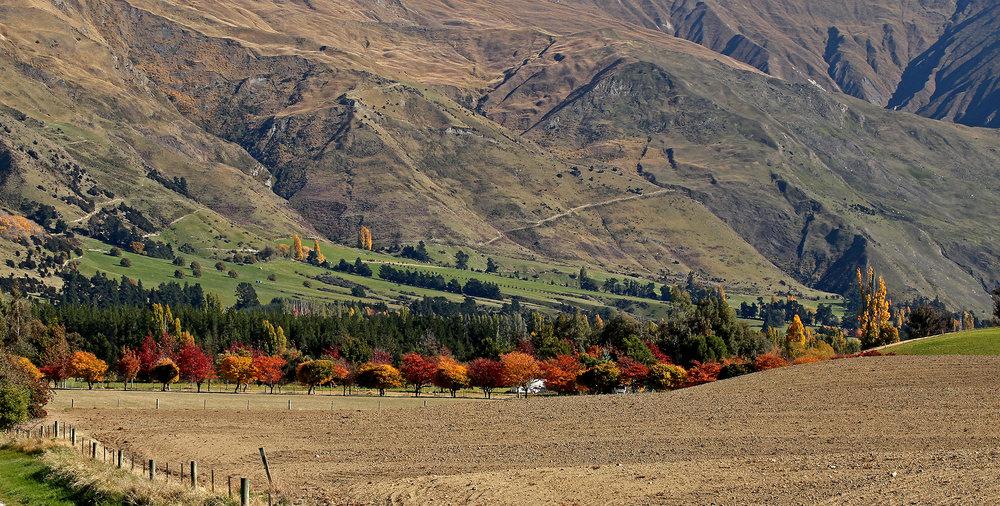 autumn0630.jpg