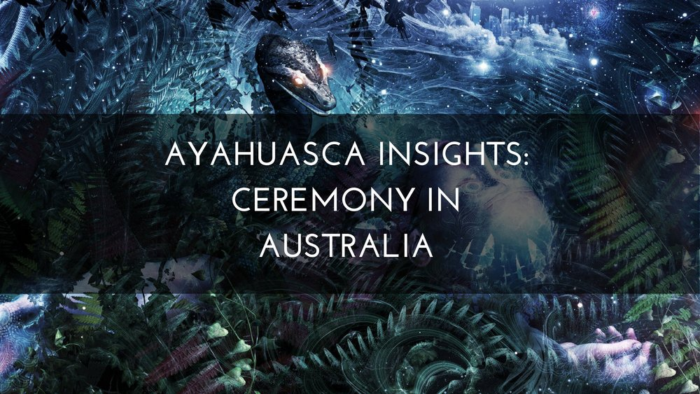 Medicine Path Ayahuasca Insights: Ceremony in Australia