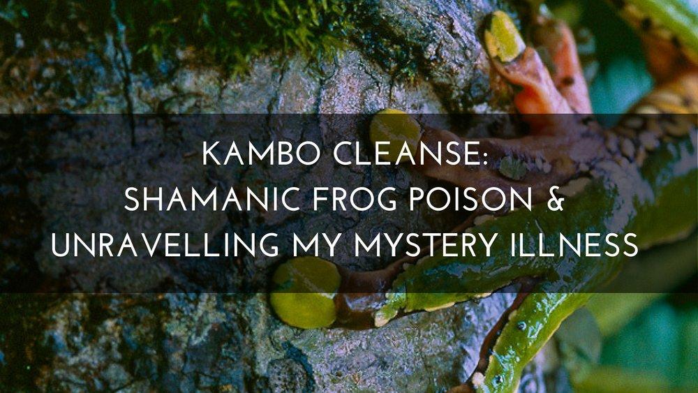 Medicine Path Kambo Cleanse Shamanic Frog Poison