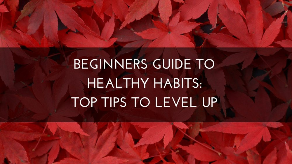 Medicine Path Beginners Guide to Healthy Habits: Top Tips to Level Up