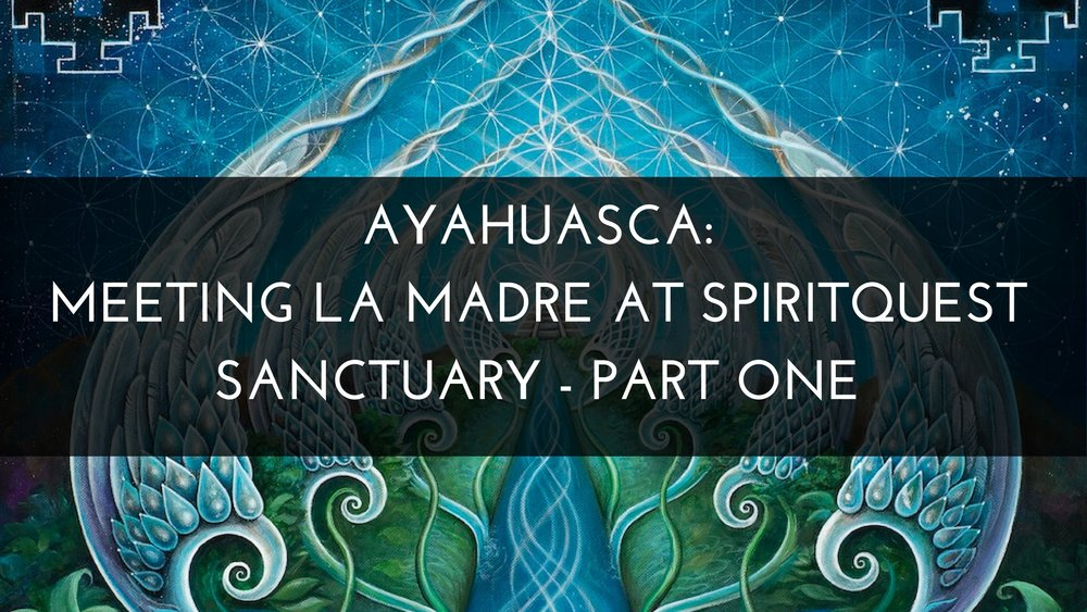 Ayahuasca: Meeting La Madre at SpiritQuest Sanctuary - Part One Medicine Path