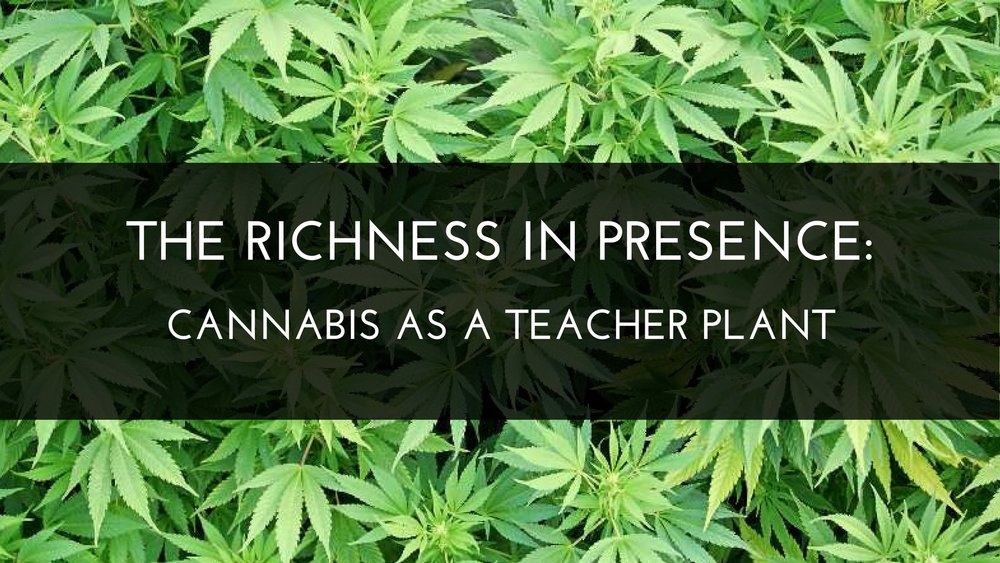 Medicine Path The Richness In Presence