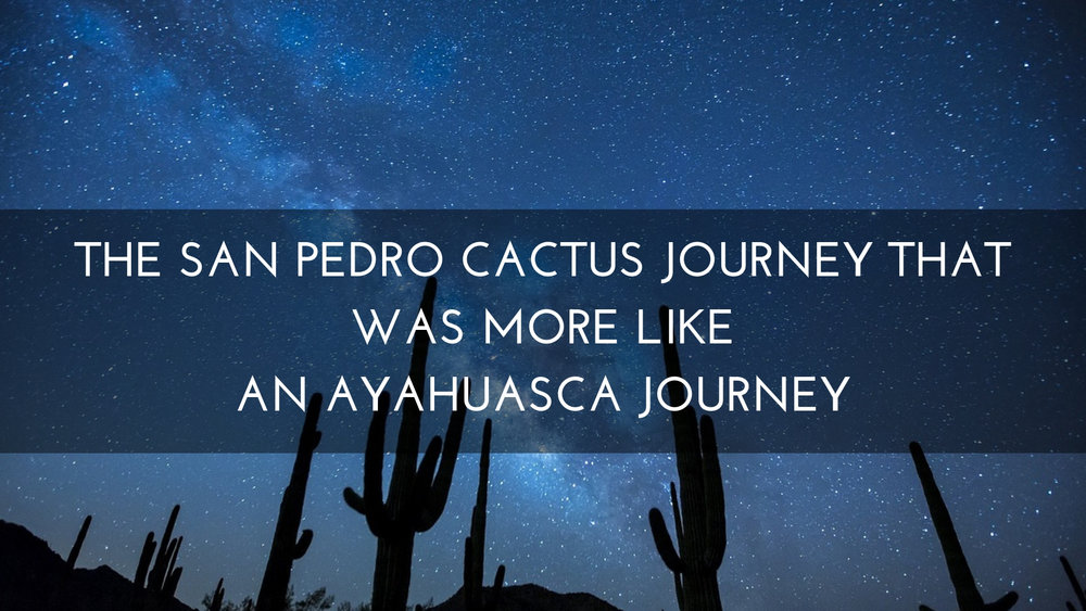 The San Pedro Cactus Journey That Was More Like An Ayahuasca Journey