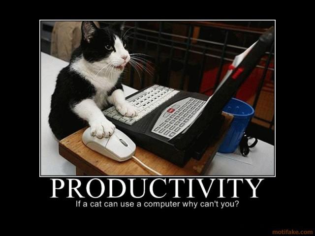 productivitycat