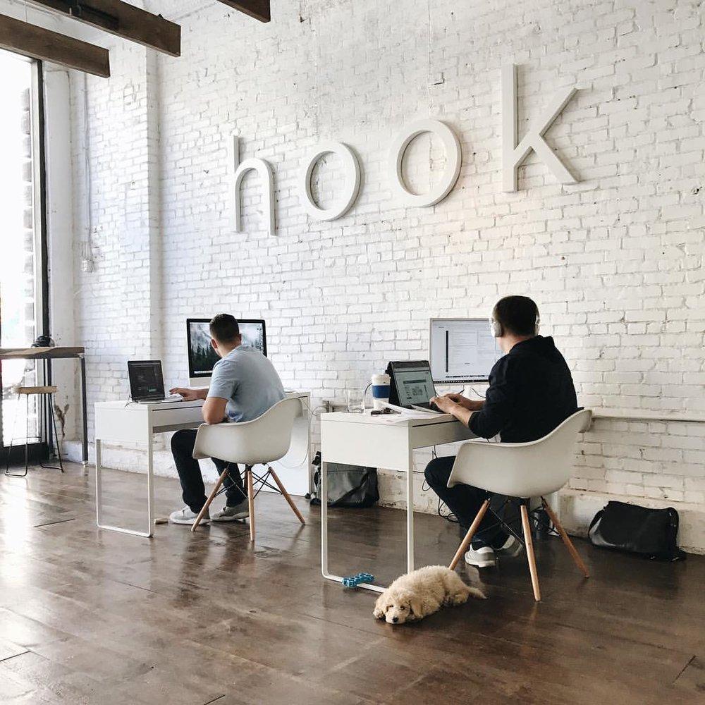 Hook-Creative-Sunny-Office-Dog-6.jpg
