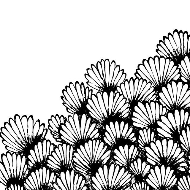 Apologises for being non exist lately been a tad unmotivated. Here's a scribble I did for my website which is still in the making sadly. #drawing #design #graphicdesign #flowers #scribble #needtogetmyaintog