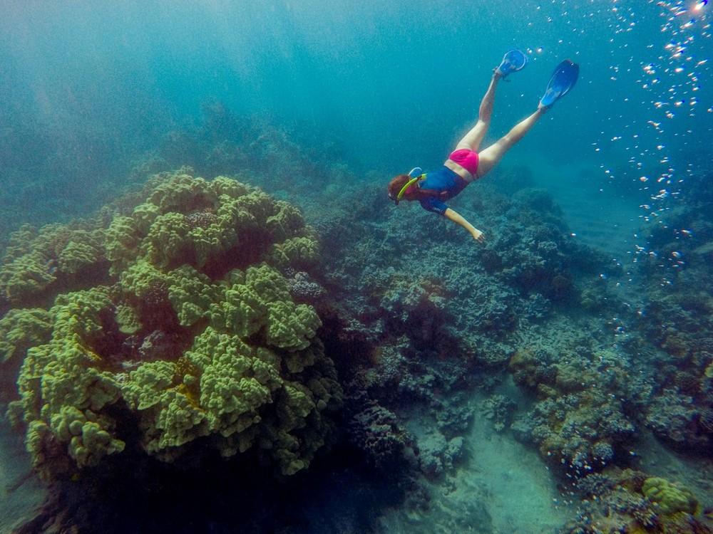 Best-Maui-Snorkeling-at-the-Ahihi-Kinau-Reserve.jpg