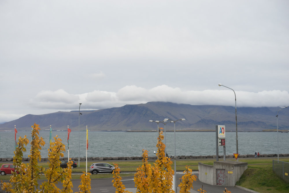 View from breakfast at Kex Hostel in Reykjavik