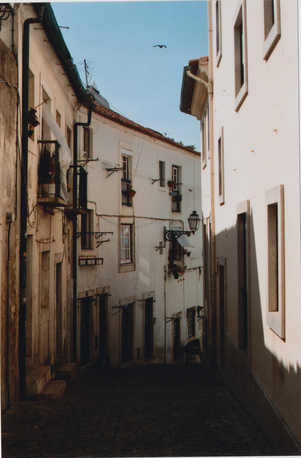 Lisbon is a labryinth of alleyways