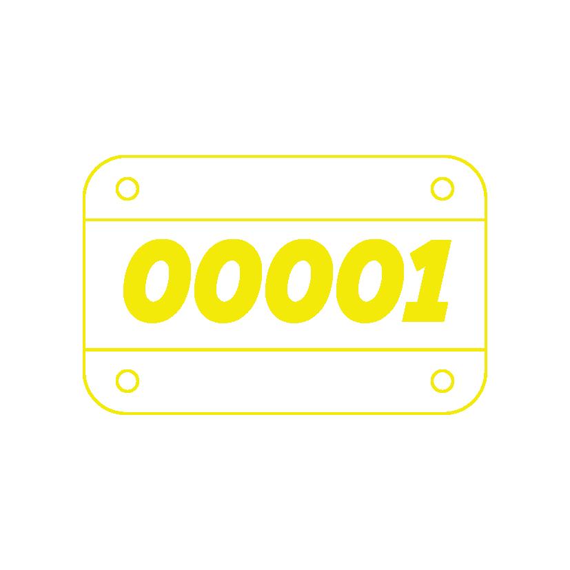 Runner's License