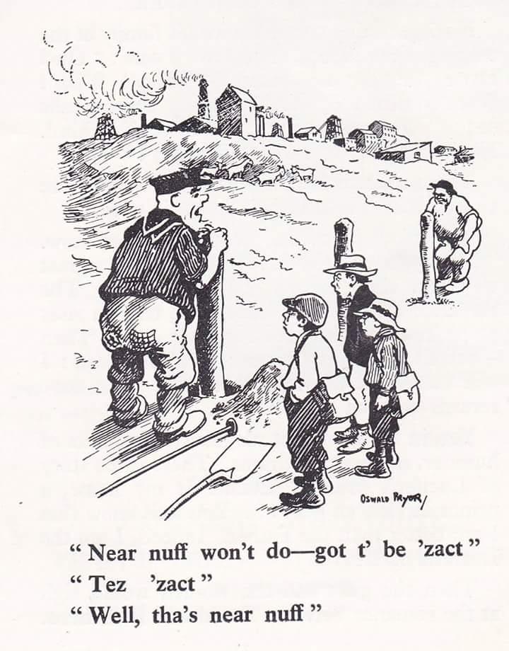 Neer's Nuff Cartoon.jpg