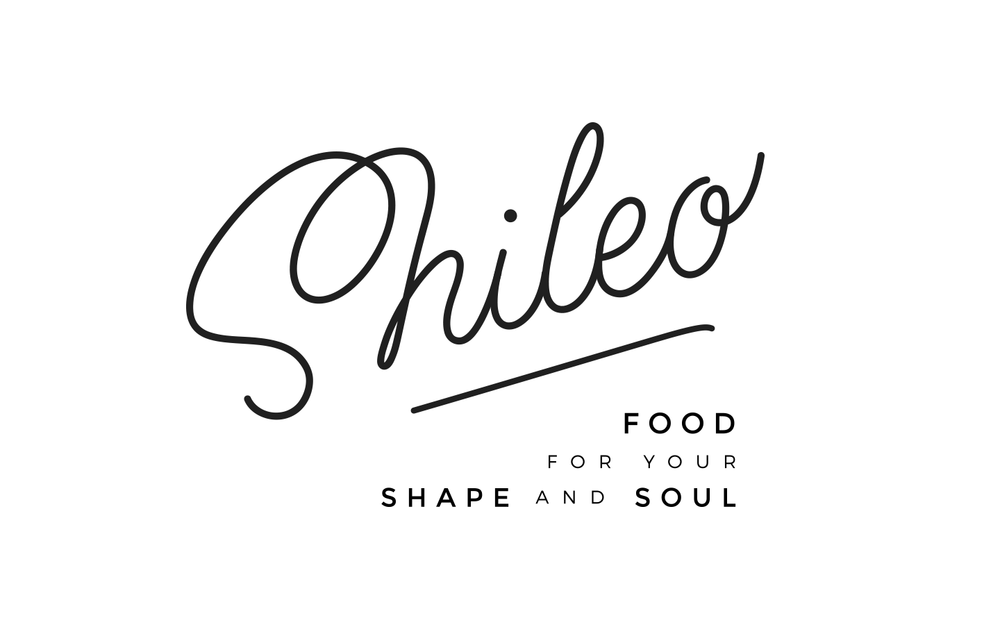 shileo_dribbble_02.png
