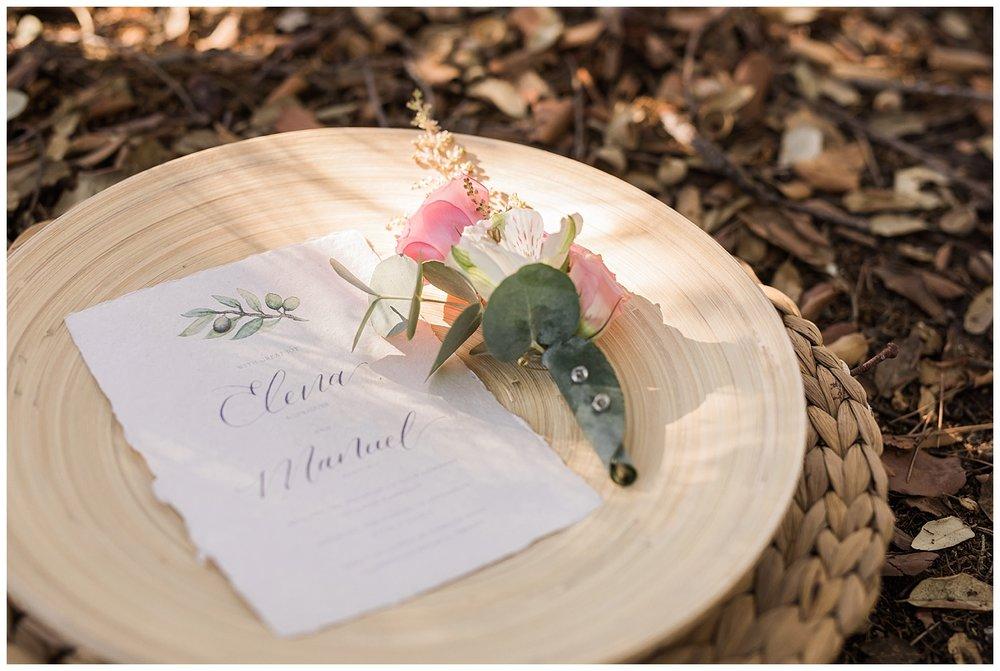 Spain Wedding Olive Tree
