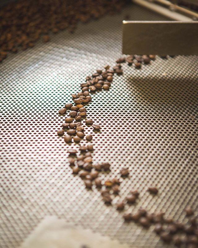 Uavhengig om man lager coldbrew eller ikke - god kaffe starter med gode bønner.