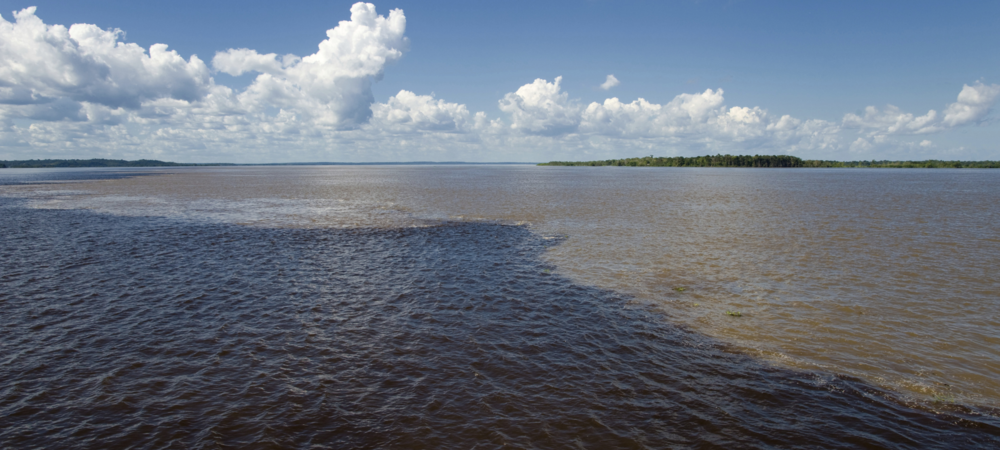 Enterprise and consumer IT do mix but with difficulty; just like the waters of the Amazon river and the Rio Negro.