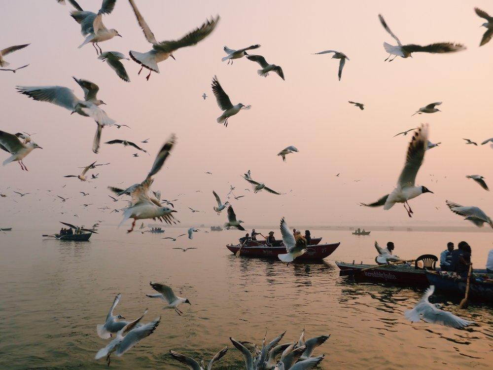 Varanasi India Travel