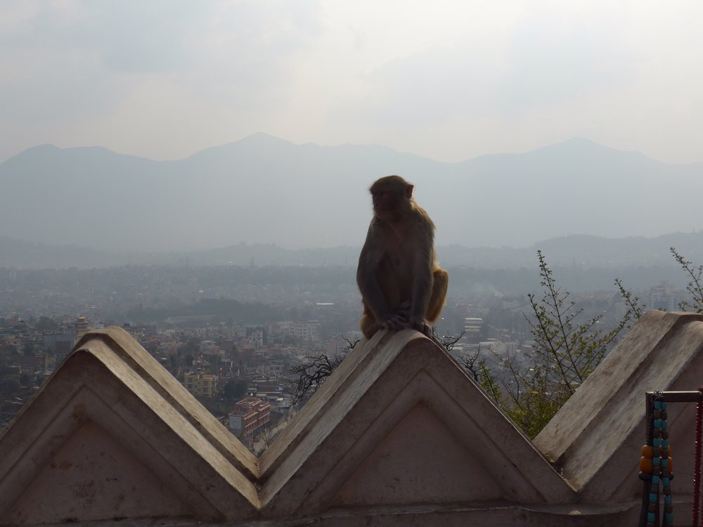 Kathmandu Travel Blog