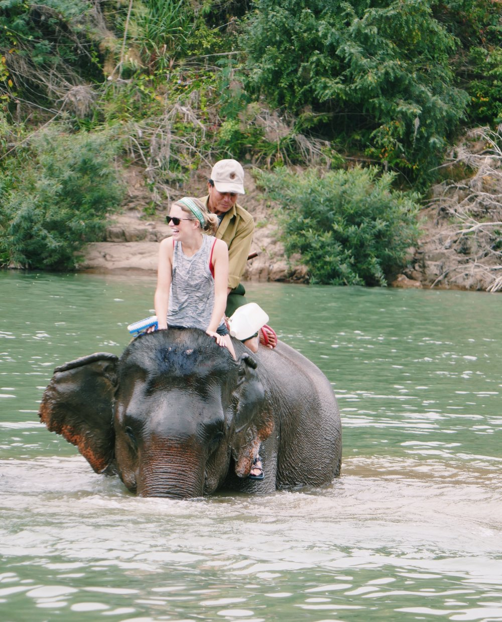 Elephant Village Laos