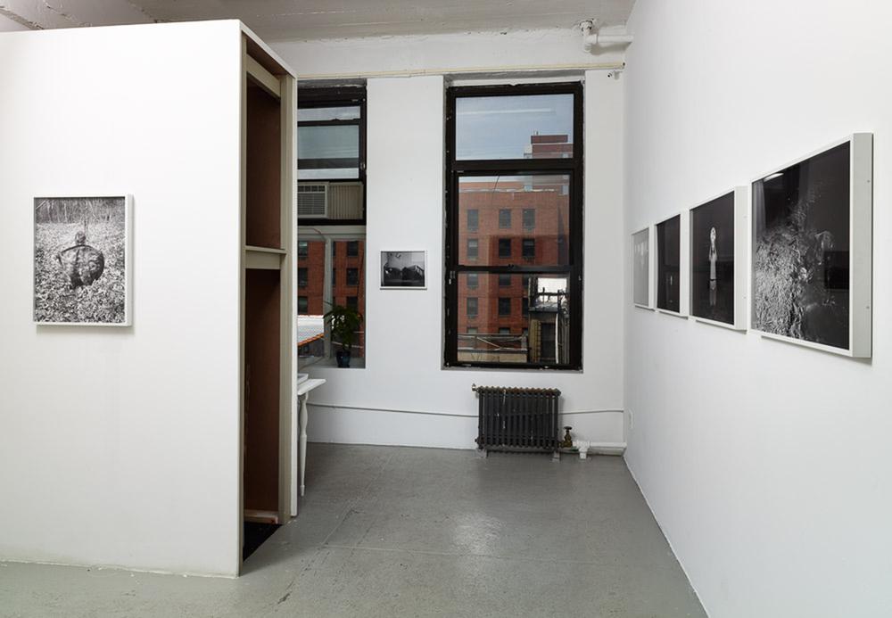 Ecstatic Consumption installation view (3 of 3) risten Lorello June 5 - July 18, 2014