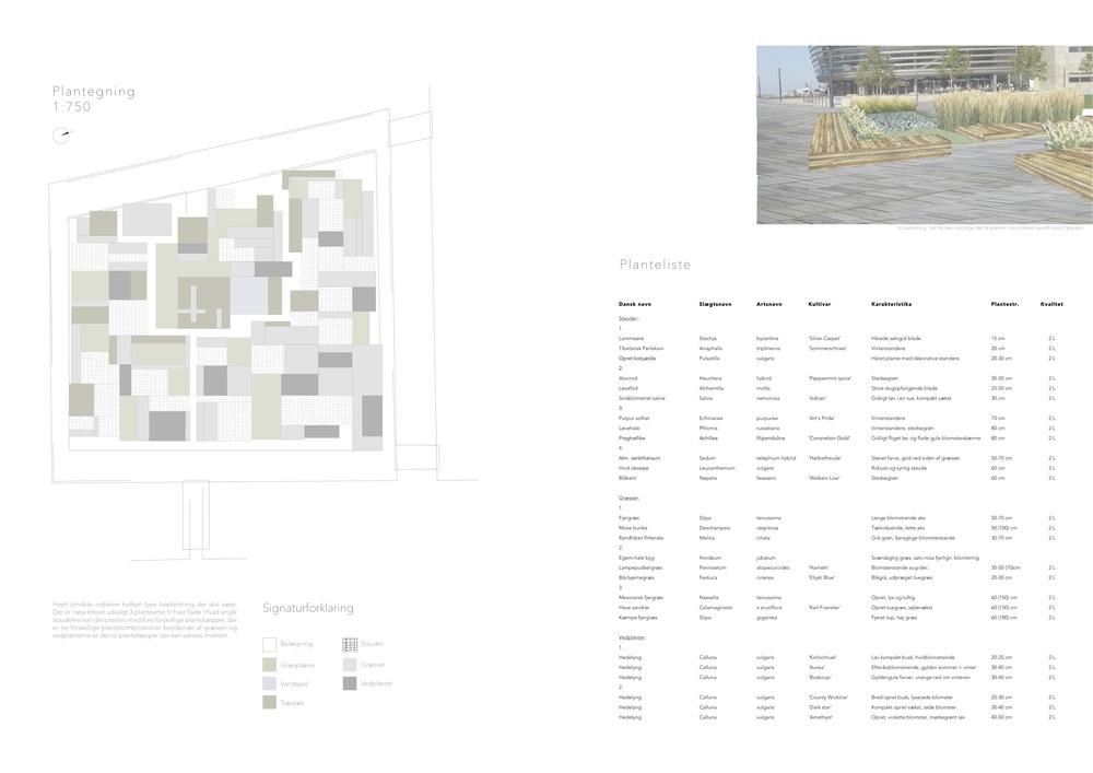 Asrosenvinge_Bep.design_7.jpg