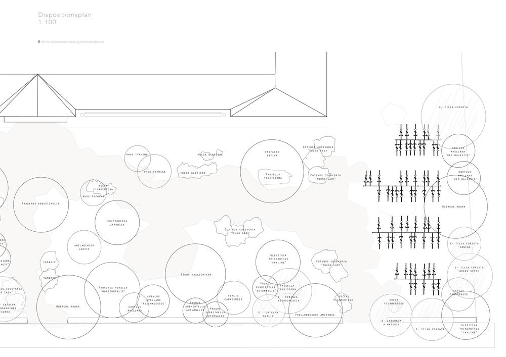 Asrosenvinge_Bep.design_11.jpg