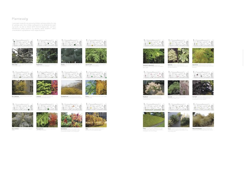 Asrosenvinge_Bep.design_15.jpg