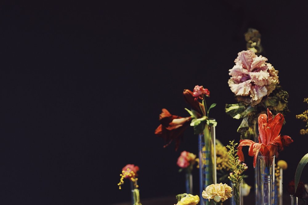 Plant Print -