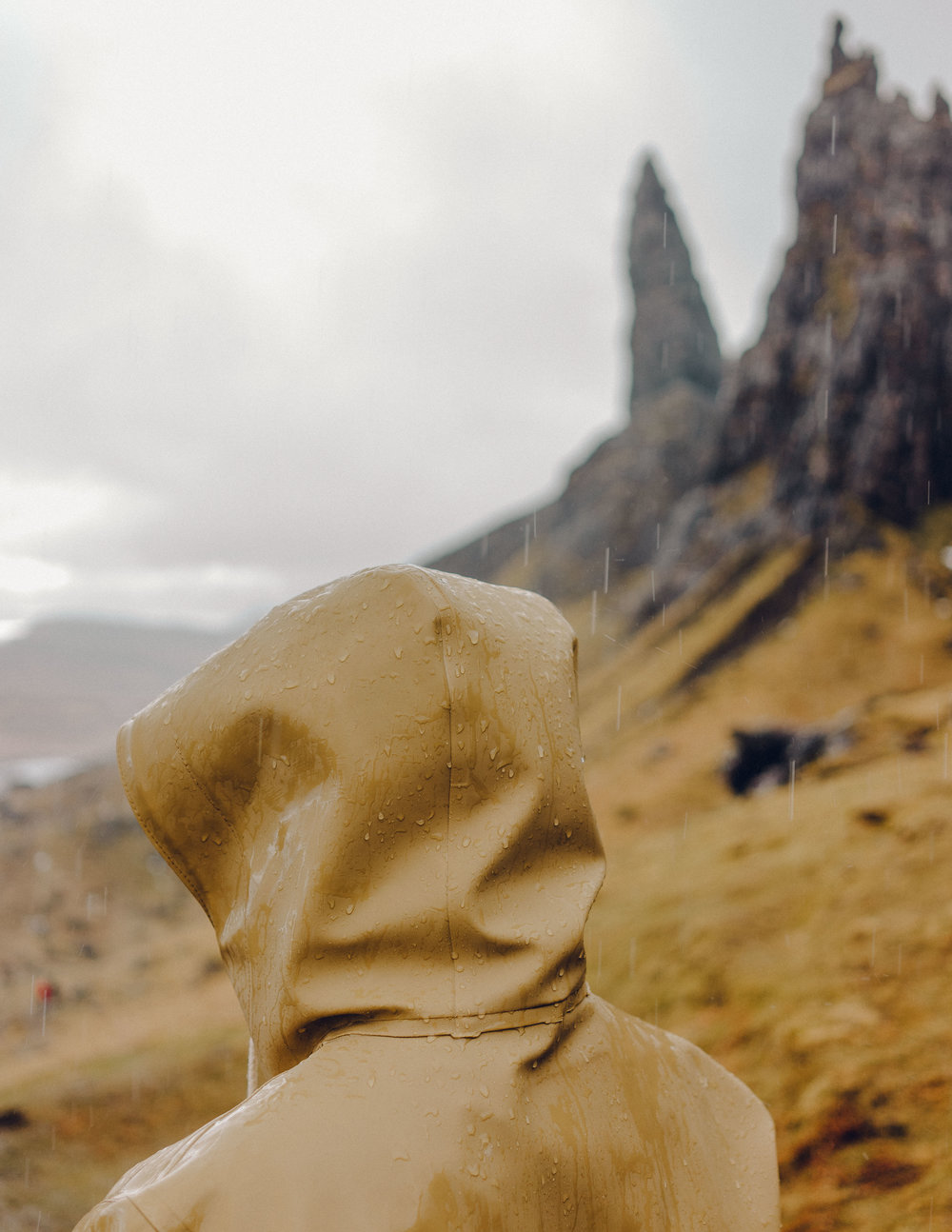 ASROSENVINGE_Scotland_Isle_Of_Skye_Old_Man_Of_Storr-03826.jpg