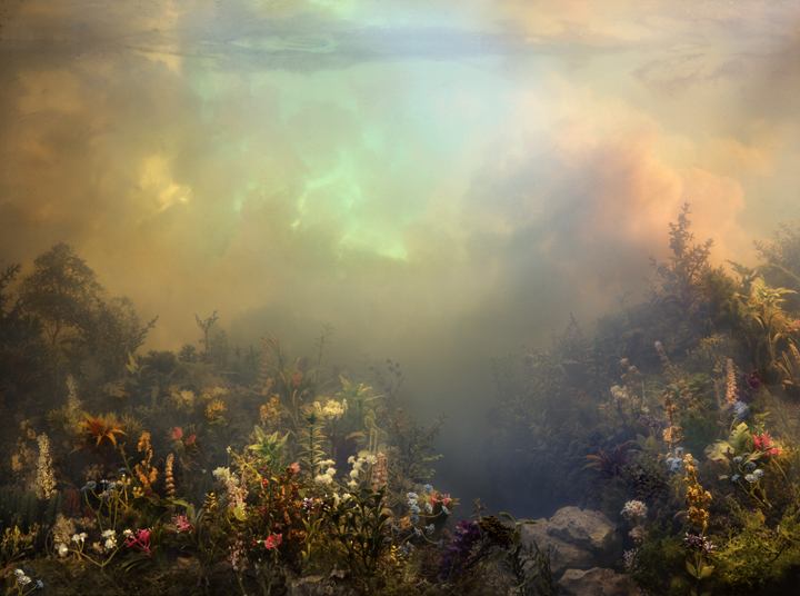 4448 Wildflowers 52i, 36x47, 53x70, 61x81, 2008, by Kim Keever