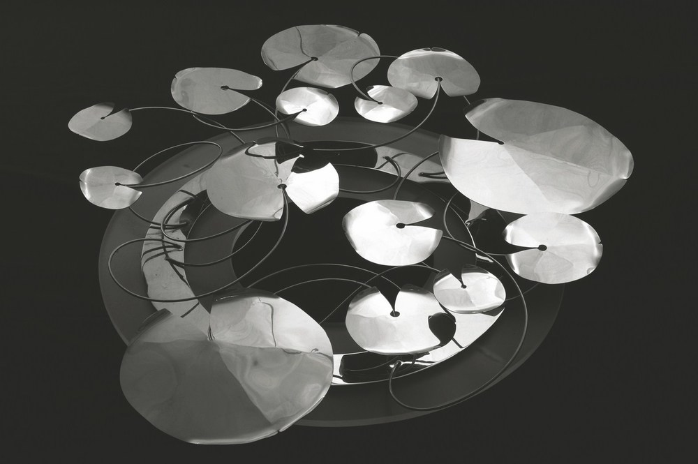 Lilly Pond , from Alex Davis Studio