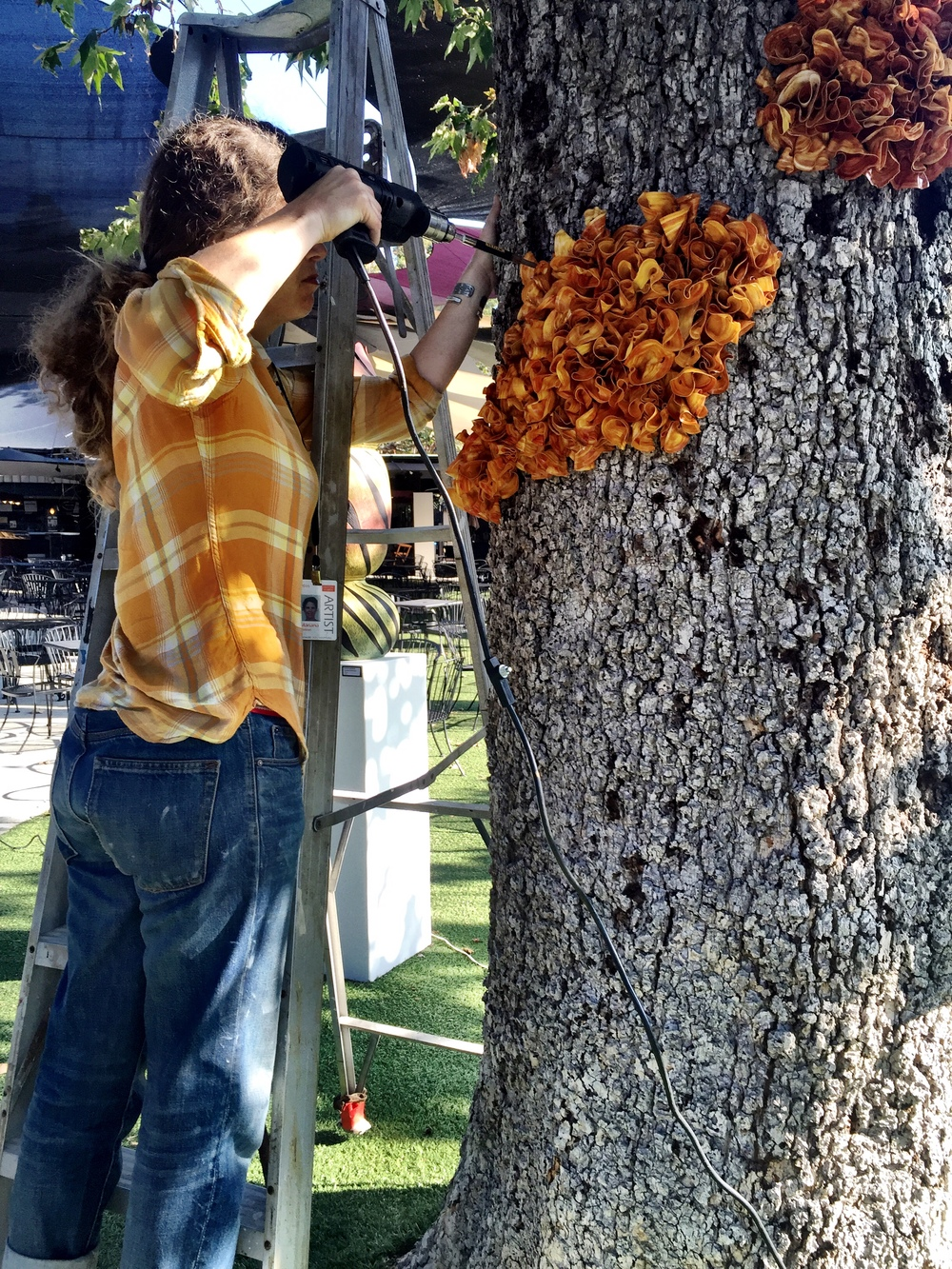 Melted 'Starbucks' coffee cup lids are melted and warped to create this orange 'Fungus' for the Festival of Arts, Laguna Beach, CA. Seen here, Mariana installing the growing 'Fungus'.