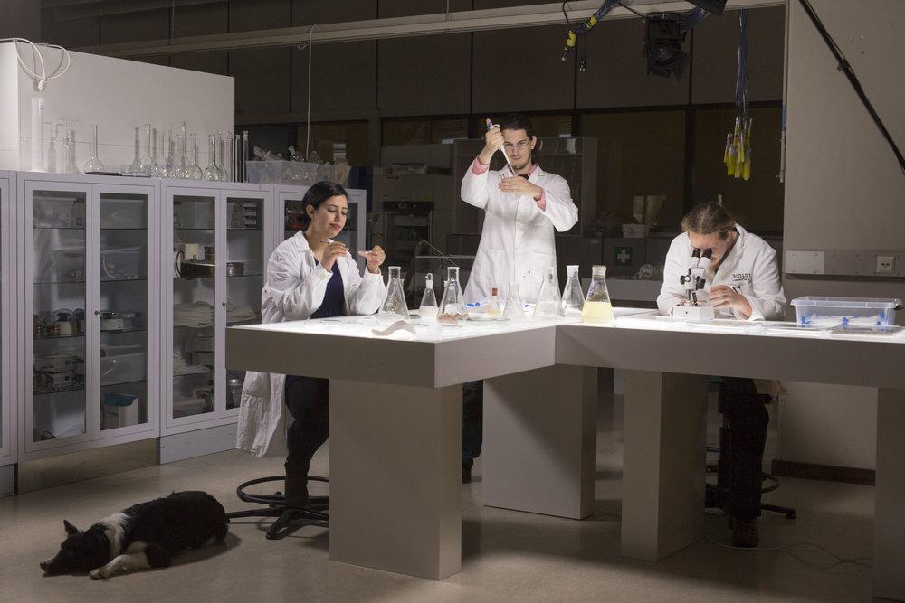 Members of the BioArt Laboratories team. Director Jalila Essaïdi, left.