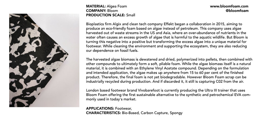 Algae Bloom.jpg