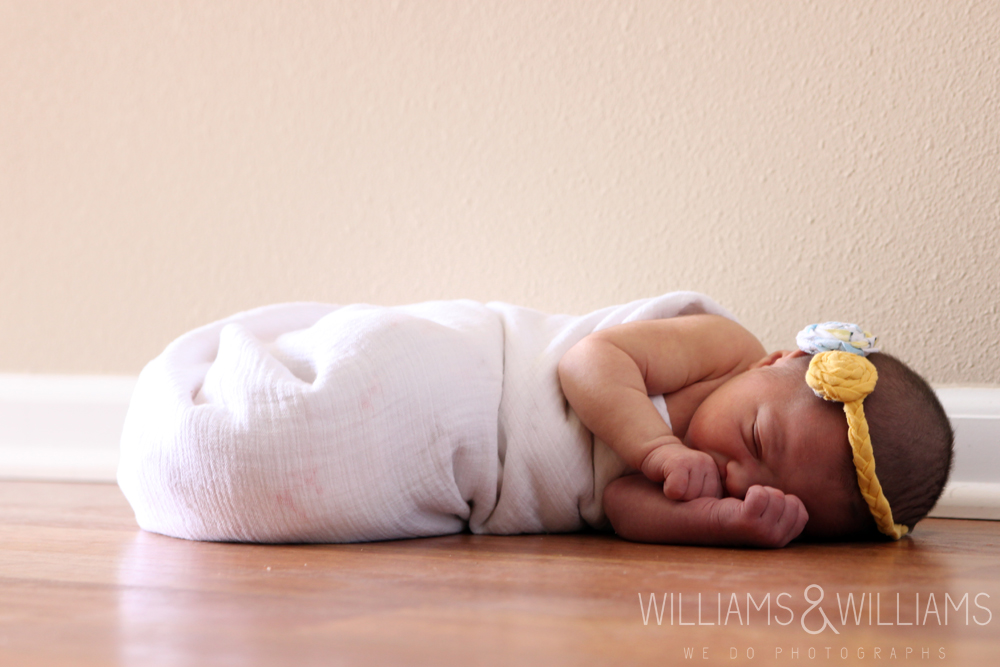 Williams & Williams Newborn Photos
